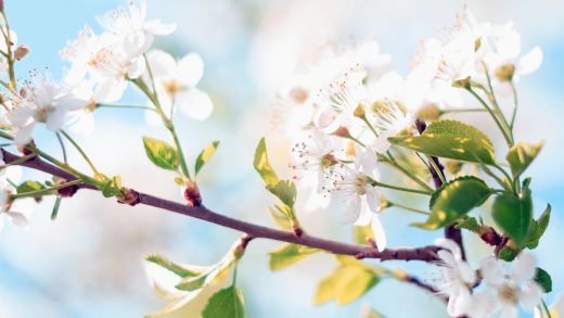 Święta Wielkanocne i Majówka – zmiany terminów realizacji przelewów