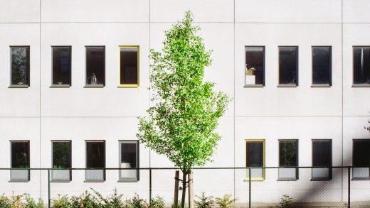 green home grant najemca